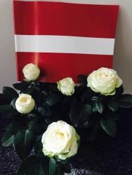 Sveicieni Beļģijas latviešu biedrībai no Ukrainas!!!