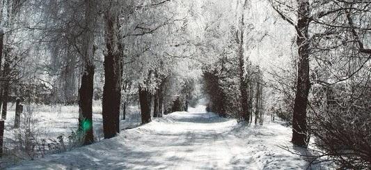 Pasākumi ar Latvijas vārdu Beļģijā JANVĀRIS / 2018