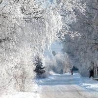 Pasākumi ar Latvijas vārdu Beļģijā – Februāris 2019