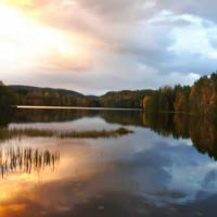 ES strādājošo tīklošanās: Vide un ilgtspēja Latvijā un pasaulē