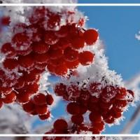 Pasākumi ar Latvijas vārdu janvārī