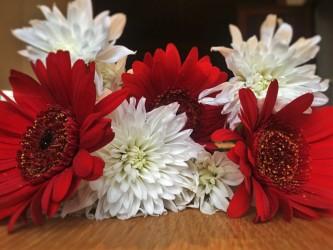 Meklējam palīgus Latvijas simtgades svētkiem